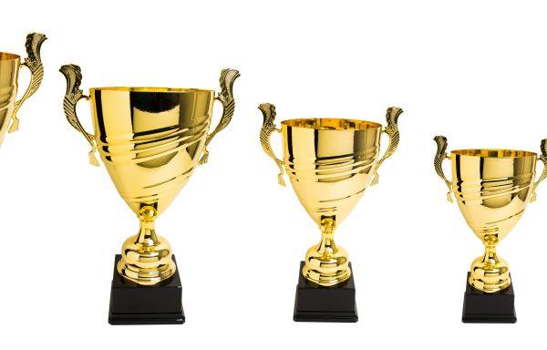 Trofeo 17 Mod. Cordones Oro